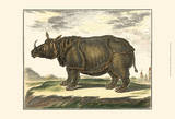 Diderot Rhino Prints by Denis Diderot
