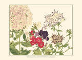 Small Japanese Flower Garden II Print by Konan Tanigami