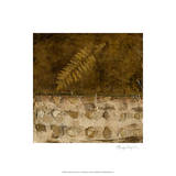 Earthen Textures IX Premium Giclee Print by Beverly Crawford