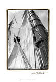 Set Sail III Prints by Laura Denardo