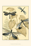 Spa Dragonflies in Nature II Prints by Megan Meagher