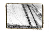 Undersail III Prints by Laura Denardo