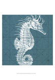 Coastal Menagerie VIII Prints by  Vision Studio