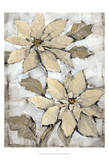 Poinsettia Study II Prints by Tim O'toole