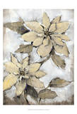 Poinsettia Study I Poster by Tim O'toole