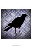 Crow & Damask Prints by  Vision Studio