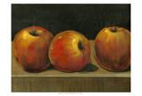 Etude de pomme Affiche par Tim O'toole