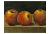 Apple Study Print by Tim O'toole