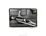 Ship Shape V Premium Giclee Print by Laura Denardo