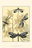 Spa Dragonflies in Nature I Posters by Megan Meagher