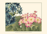 Small Japanese Flower Garden IV Prints by Konan Tanigami