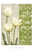 White Tulips Prints by matt patterson