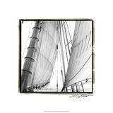 Under Sail II Premium Giclee Print by Laura Denardo