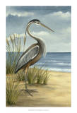 Shore Bird I Print by Ethan Harper