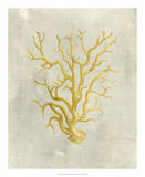 Coral in Mustard Art