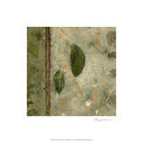 Earthen Textures III Limited Edition by Beverly Crawford