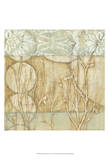Small Willow and Lace II Prints by Jennifer Goldberger