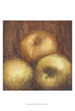 Rustic Apples II Prints by Ethan Harper