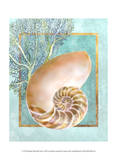 Nautilus Shell and Coral Posters af Lori Schory