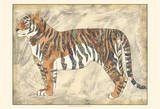 Royal Tiger Prints by Chariklia Zarris