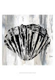 Black Shell II Plakater av Andrea James