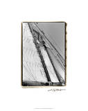 Set Sail I Premium Giclee Print by Laura Denardo