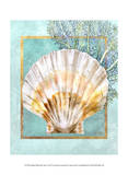 Scallop Shell and Coral Print by Lori Schory