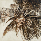 Coconut Palm I Prints by Patricia Quintero-Pinto