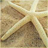 Starfish Prints by  NASA