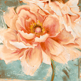 Beautiful Peonies Square I Prints by Patricia Quintero-Pinto