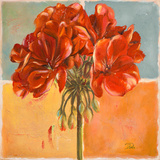 Red Geraniums I Poster by Patricia Pinto