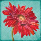 Joyful Daisy Prints by Patricia Quintero-Pinto