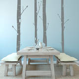 Aspen Trees (x4) Wall Decal