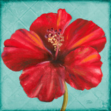 Joyful Hibiscus Poster by Patricia Pinto