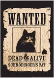 Snorg Tees - Schrodinger's Cat Plakáty