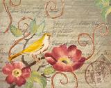 Avian Postcard II Posters by Lanie Loreth