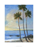 Tropical Breeze II Limited Edition by Tim O'toole