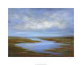 Pescadero Wetlands Premium Giclee Print by Sheila Finch