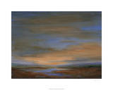 Wetlands Sunset Premium Giclee Print by Sheila Finch