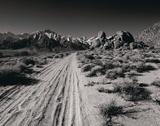 Desert Landscape II Giclee Print by Chris Simpson