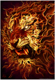 Fire Tiger Prints by Tom Wood