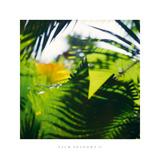 Palm Shadows II Giclee Print by Chris Simpson