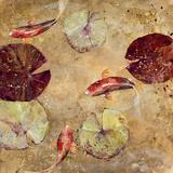 Go Fish I Reproduction procédé giclée par  Angellini