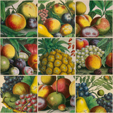 Composition of Fruits Giclee Print by Robert Furber
