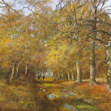 Autumn Time Gicle-tryk af Clive Madgwick