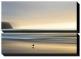 Morning Visit Kunstdruck von Marvin Pelkey