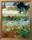 Garden in Bloom, Arles, c.1888 Framed Giclee Print by Vincent van Gogh