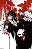 The Punisher - Pistols Posters