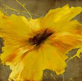 Colourful Flowers II Giclée-trykk av Bridges,