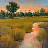 Heron Lake I Giclee Print by  Patrick